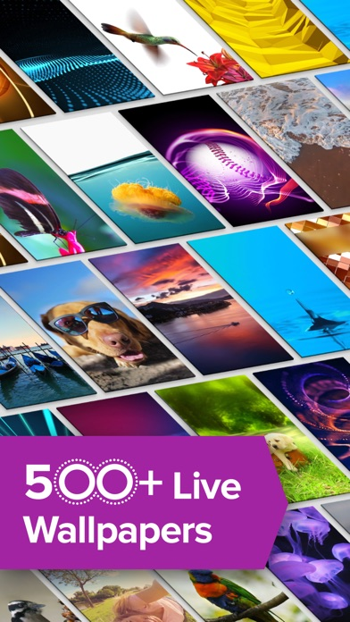Live Wallpapers by Themify: Dynamic Animated Theme-0