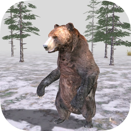 Bear Forest 3D Simulator Pro iOS App
