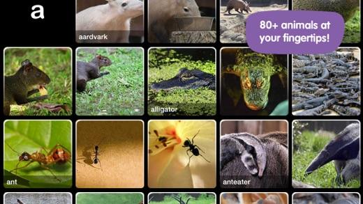 Abc Wildlife On The App Store