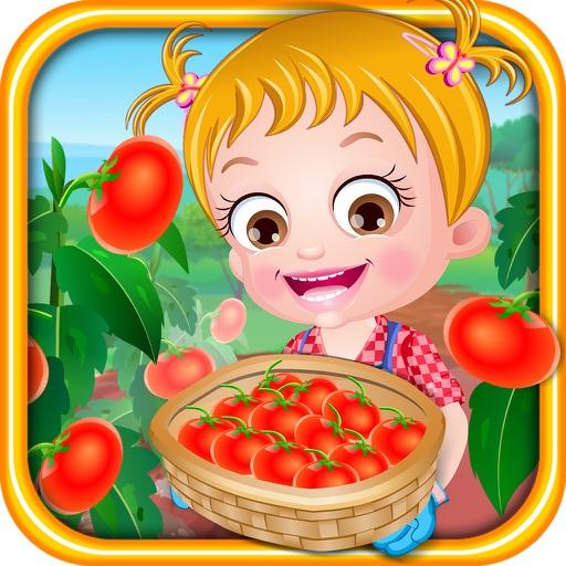 Baby Hazel Tomato Farming iOS App