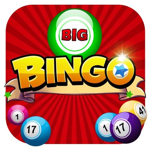 Number Nut Big Bingo iOS App