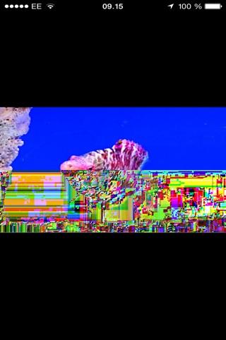 River And Reef Aquatics screenshot 4