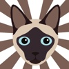 Animojis - Awesome Dog & Cat Face Stickers