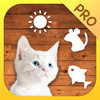Cat Mate Pro - Toys and games for cats