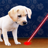 Laser Pointer for Dogs Wiki