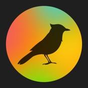 TaoMix 2 - Rilassati con i suoni della natura