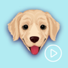 goldenGIF - Animated GIF Golden Retriever Emoji Wiki