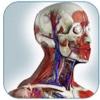 Gray's Anatomy - Atlas Human