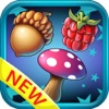 Candy big blast : Jungle garden saga match games