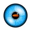 eyeGymVR Icon