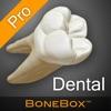 BoneBox™ - Dental Pro 앱 아이콘 이미지