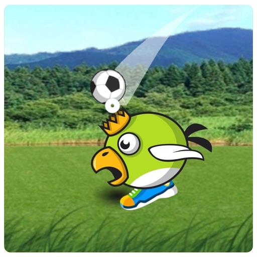 Animal Head Soccer iOS App