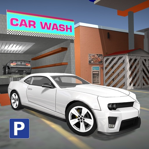 Cost To Get Your Car Washed In Jp