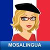 Aprender francés rapidamente con MosaLingua
