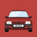 The Essential Buyer's Guide for Peugeot 205 GTI