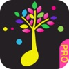 Baby Touch Music Pro, piano& guitar sound