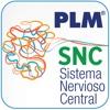 PLM SNC Sudamérica