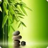 Meditation Music- Yoga & Relax