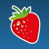 Food Intolerances - Baliza GmbH