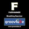 FairHammer