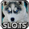 Wild Wolf World Slots: Creed to the Casino Jackpot