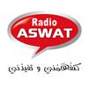Brahim Bouraye - Radio aswat :: راديو أصوات artwork