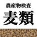 農産物検査標準品等 麦類