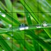 duytu tran - Selfie Photo Puzzle artwork