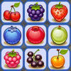 Fruit Link HD Wiki