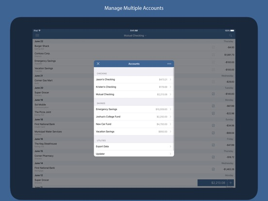 Screenshot #3 for Numero - Personal Finance Manager