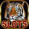 Wild Cat Slots Kingdom — Jackpot Casino
