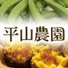 種子島から産直!安納芋など新鮮野菜のお取り寄せなら 平山農園