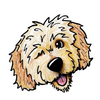 DoodleMoji - Doodle Emoji & St... app for iphone