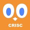 CRISC Exam Prep 2017 PRO