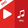 Video to MP3 Converter Pro - Easy Version audio
