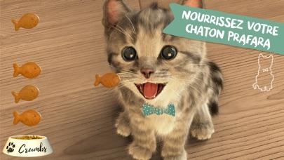 download Little Kitten apps 0