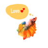 Watercolor Betta Fish Sticker Wiki