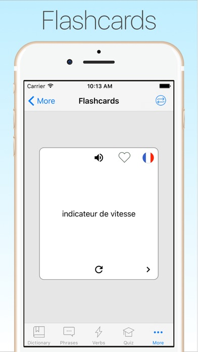 Screenshot #9 for French English Dictionary +