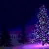 Веселые рождественские открытк