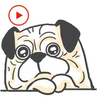 Funny Dog Animated Stickers