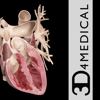 3D4Medical.com, LLC - Heart Pro III - iPhone アートワーク