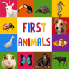 erkay uzun - First Words for Baby: Animals - Premium  artwork