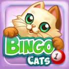 Bingo Cats icon