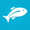 Fishbox - Fishing Forecast. Best Spots and Times Icon