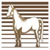 Equinos Book Wiki