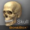 BoneBox™ - Skull Viewer
