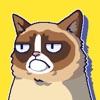 Сердитый Котик: ужасная игра