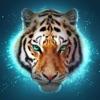The Tiger: Online RPG Simulator