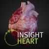 ANIMA RES - INSIGHT HEART  artwork
