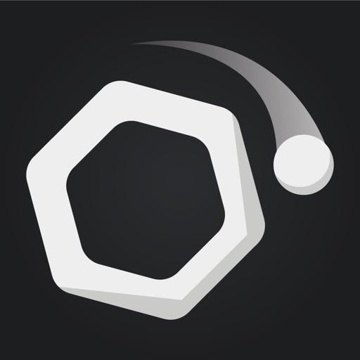 Newton — Gravity Puzzle